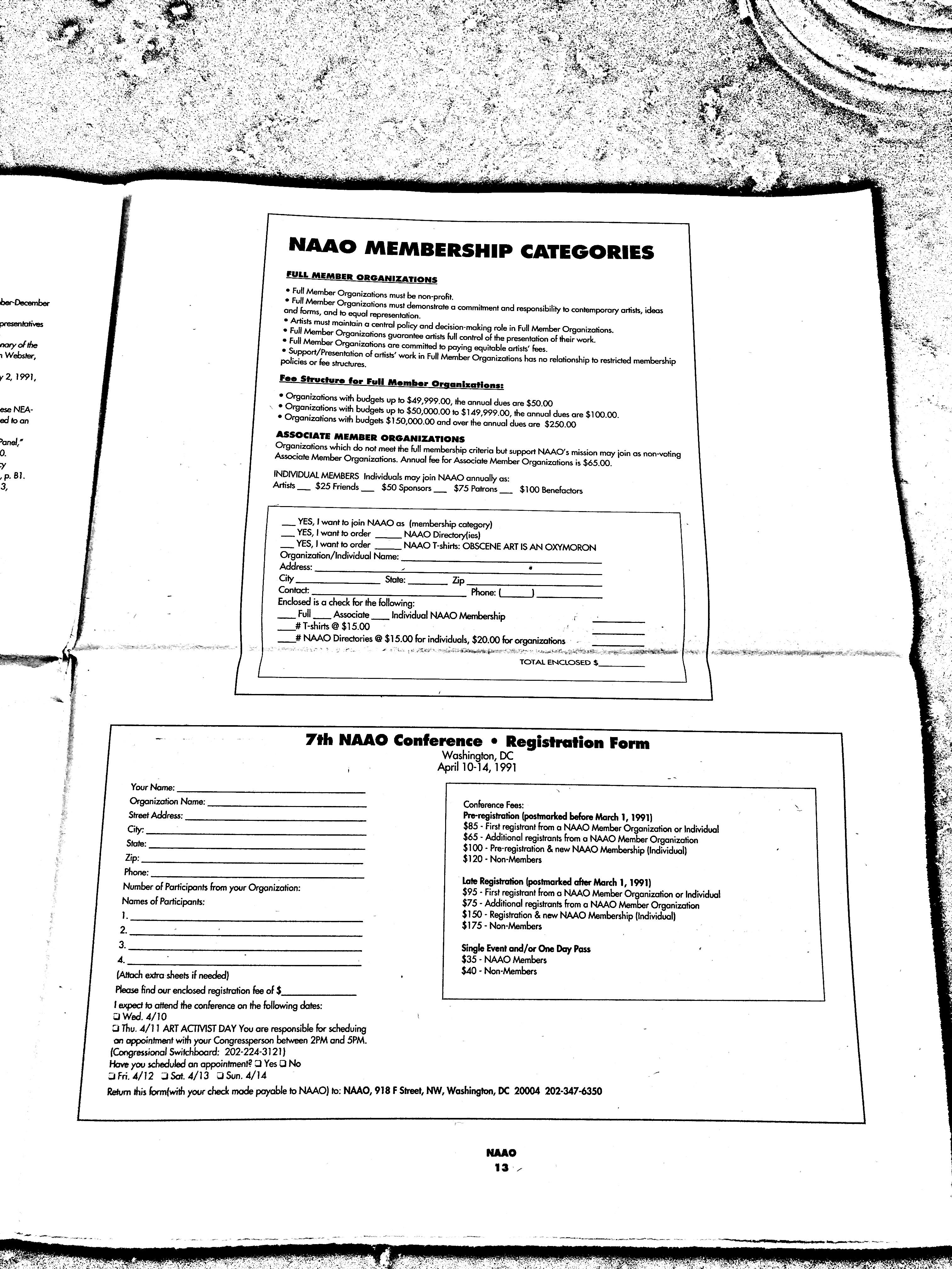 January 1991 - NAAO Bulletin Page 13.jpg