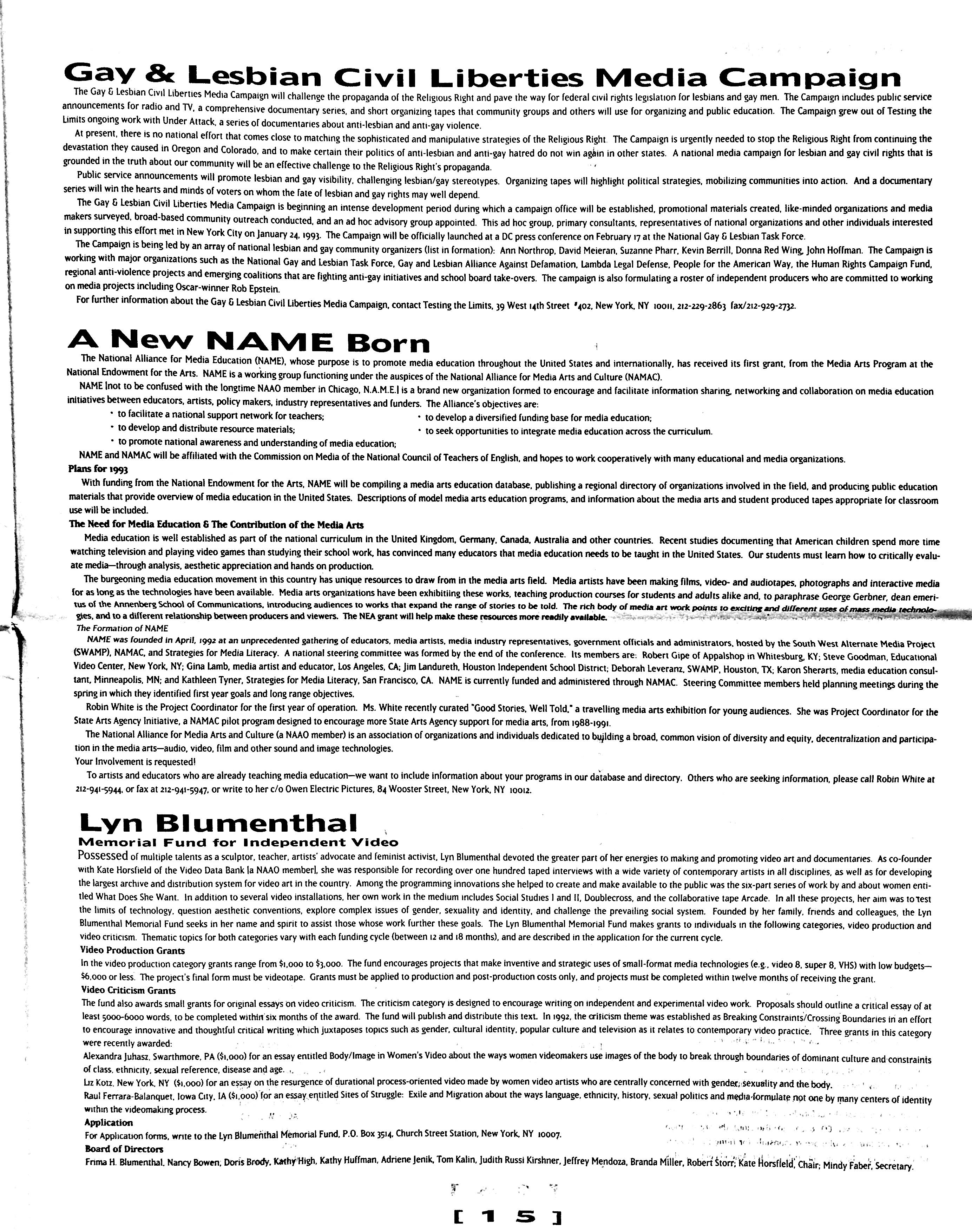February 1993 - NAAO Bulletin Page 15.jpg